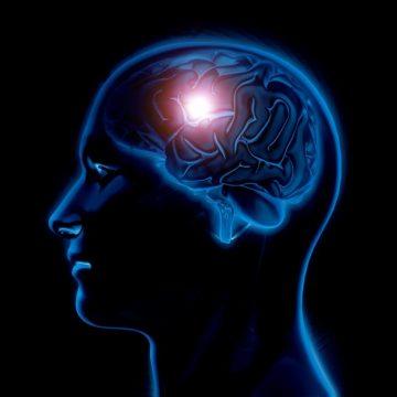 מה הקשר בין תפקוד המוח לשמיעה?